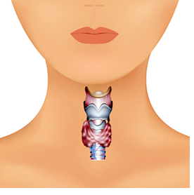 Thyroid Cancer Is A C Word Thyroid Uk
